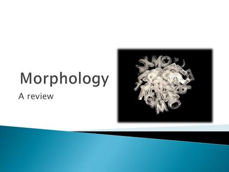 Morphology A review.