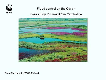 Flood control on the Odra – case study Domaszków - Tarchalice