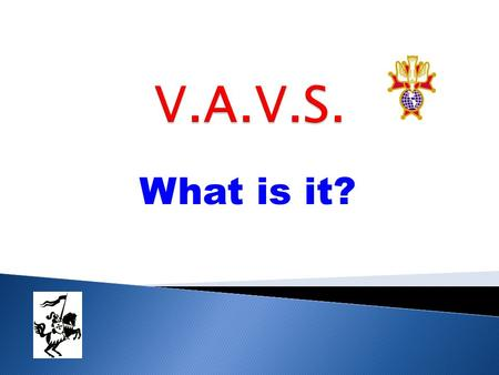 What is it?. The Department of Veterans Affairs Voluntary Service (VAVS) was founded in 1946 to provide for our nation's veterans while they are cared.