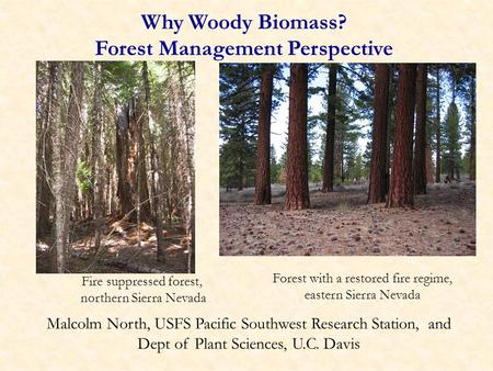 Why Woody Biomass? Forest Management Perspective Malcolm North, USFS Pacific Southwest Research Station, and Dept of Plant Sciences, U.C. Davis Fire suppressed.