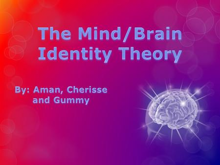  Definition: The theory that mental states are really physical brain states  It is a contemporary materialist view  Materialists believe that reality.