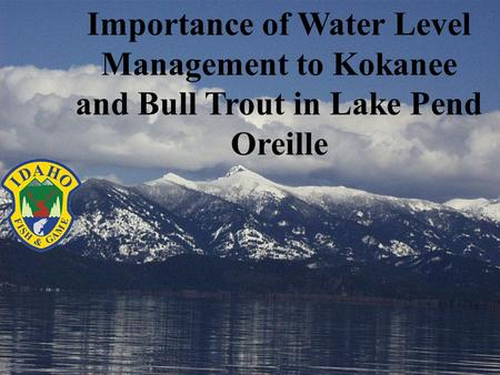 Importance of Water Level Management to Kokanee and Bull Trout in Lake Pend Oreille.
