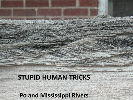 Writing Earth history with continental-margin sedimentary processes STUPID HUMAN TRICKS Po and Mississippi Rivers.