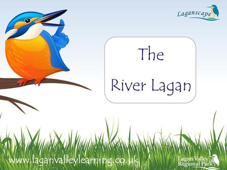 The River Lagan www.laganvalleylearning.co.uk.