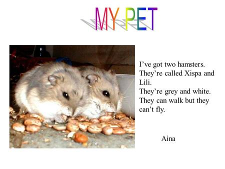 I've got two hamsters. They're called Xispa and Lili. They're grey and white. They can walk but they can't fly. Aina.