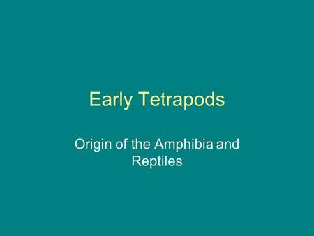 Early Tetrapods Origin of the Amphibia and Reptiles.