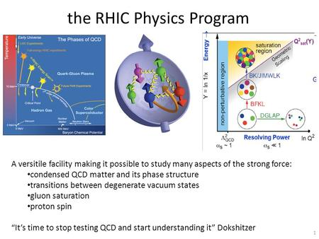 The RHIC Physics Program 1 A versitile facility making it possible to study many aspects of the strong force: condensed QCD matter and its phase structure.