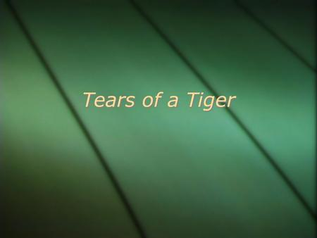 Tears of a Tiger.  What do you think Tears of a Tiger will be about based on the title?  Book Walk-through  What do you think Tears of a Tiger will.