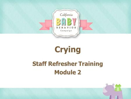 Crying Staff Refresher Training Module 2. Agenda Video Clips of Cute Babies Video Clips of Dr. Jane Talking to Moms Role Playing Practice Take Home Activity.