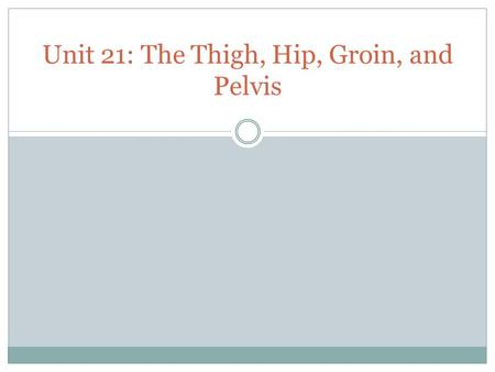 Unit 21: The Thigh, Hip, Groin, and Pelvis. Anatomy of the Pelvis, Thigh, and Hip.