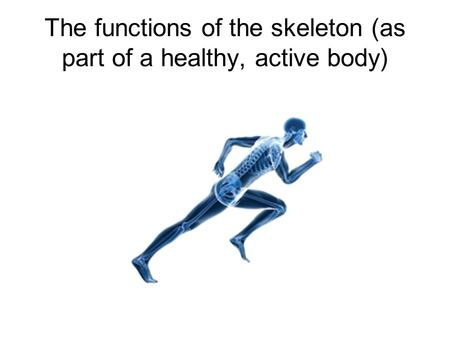 The functions of the skeleton (as part of a healthy, active body)