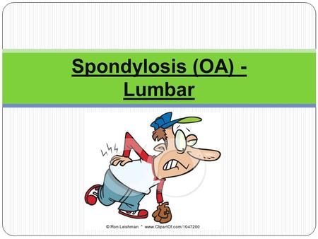 "Spondylosis (OA) - Lumbar. Definition ""Spondy"" is Latin for spine ""Losis"" is the Latin term for problem. Not only osteoarthritis of the lumbar spine,"