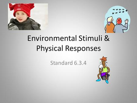 Environmental Stimuli & Physical Responses Standard 6.3.4.