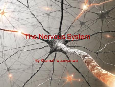 The Nervous System By Khamal Iwuanyanwu. Nervous System The Nervous System is the part of the body which controls its voluntary and involuntary actions.