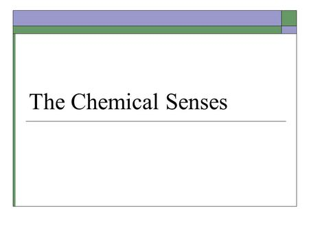 The Chemical Senses. Chemoreceptors  Chemically sensitive cells located throughout the body to monitor: Irritating chemicals on skin or in mucus Ingested.