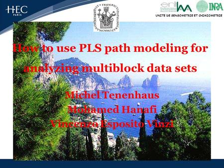 UNITE DE SENSOMETRIE ET CHIMIOMETRIE How to use PLS path modeling for analyzing multiblock data sets Michel Tenenhaus Mohamed Hanafi Vincenzo Esposito.