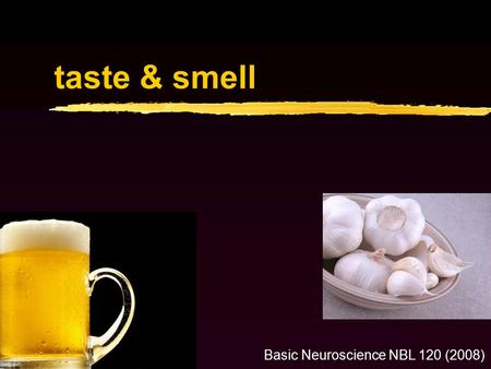 Taste & smell Basic Neuroscience NBL 120 (2008). Gustatory & olfactory systems Extract information from chemicals in the environment G-protein coupled.