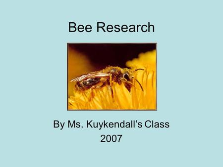 Bee Research By Ms. Kuykendall's Class 2007. Honeybees and Honey By William, Devin and Franklin Honeybees make honey so they have food to eat.