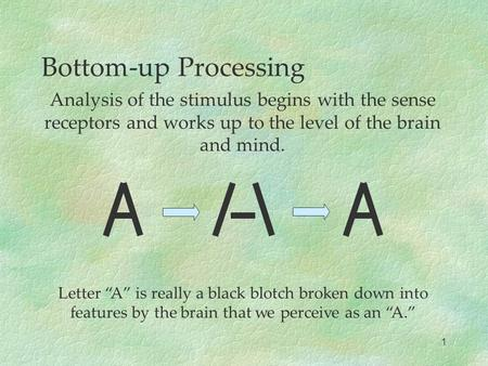 "Bottom-up Processing Analysis of the stimulus begins with the sense receptors and works up to the level of the brain and mind. Letter ""A"" is really a black."
