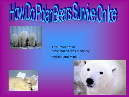 This PowerPoint presentation was made by: Melissa and Minou.