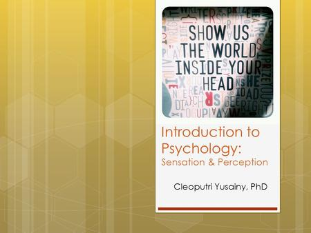 Introduction to Psychology: Sensation & Perception Cleoputri Yusainy, PhD.