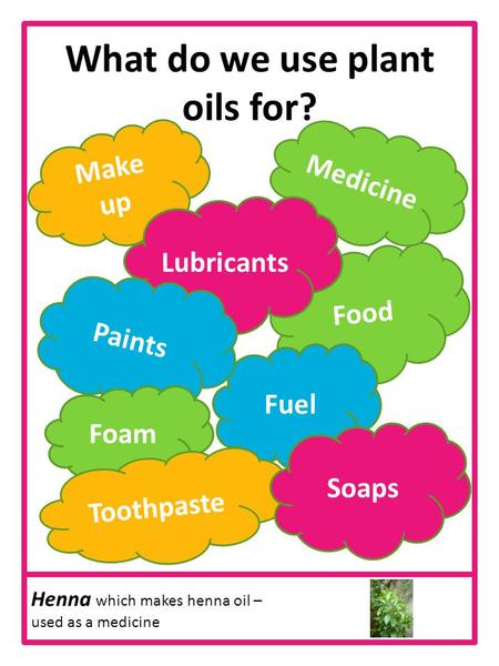 What do we use plant oils for? Make up Food Fuel Medicine Lubricants Paints Foam Toothpaste Soaps Henna which makes henna oil – used as a medicine.