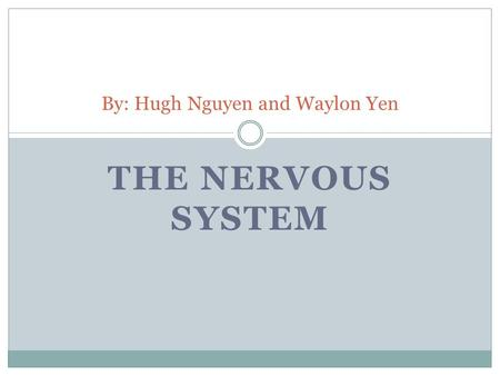 THE NERVOUS SYSTEM By: Hugh Nguyen and Waylon Yen.