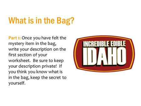 What is in the Bag? Part 1: Once you have felt the mystery item in the bag, write your description on the first section of your worksheet. Be sure to keep.