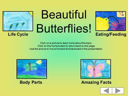 Beautiful Butterflies! Click on a picture to learn more about the topic. Click on the home button to return back to this page. Use the arrows to move.