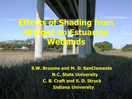Effects of Shading from Bridges on Estuarine Wetlands S.W. Broome and M. D. SanClements N.C. State University C. B. Craft and S. D. Struck Indiana University.