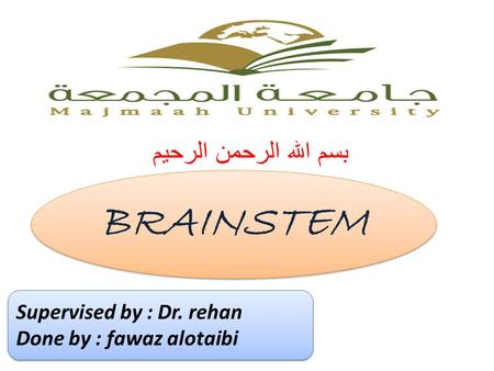 بسم الله الرحمن الرحيم BRAINSTEM Supervised by : Dr. rehan Done by : fawaz alotaibi Supervised by : Dr. rehan Done by : fawaz alotaibi.