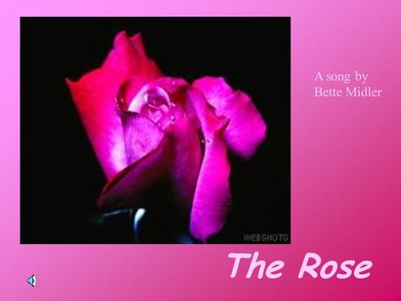 The Rose A song by Bette Midler Some say love, it is a river That drowns the tender reed Some say love, it is a razor That leaves your soul to bleed.
