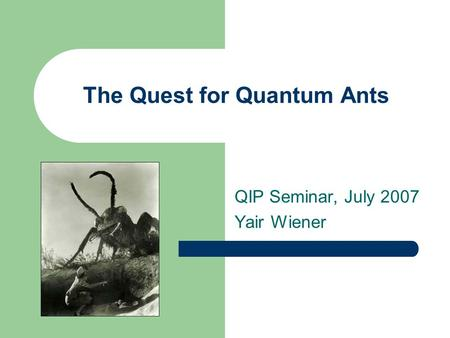 The Quest for Quantum Ants QIP Seminar, July 2007 Yair Wiener.