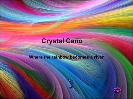 (REFLEXIONES) Where the rainbow becomes a river Crystal Caño.