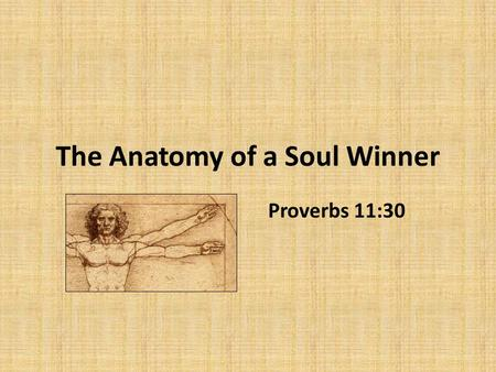 The Anatomy of a Soul Winner Proverbs 11:30. The Anatomy of a Soul Winner 1.A Mind That Understands – The Value of the Soul – The Plight of the Sinner.