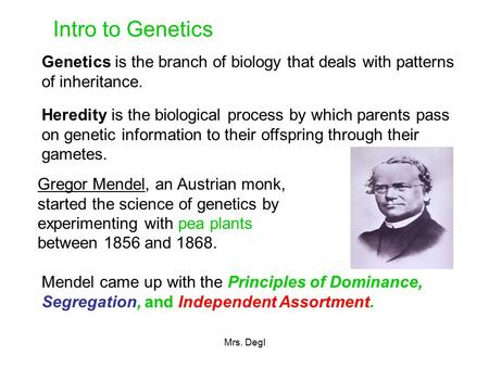 Intro to Genetics Genetics is the branch of biology that deals with patterns of inheritance. Heredity is the biological process by which parents pass on.