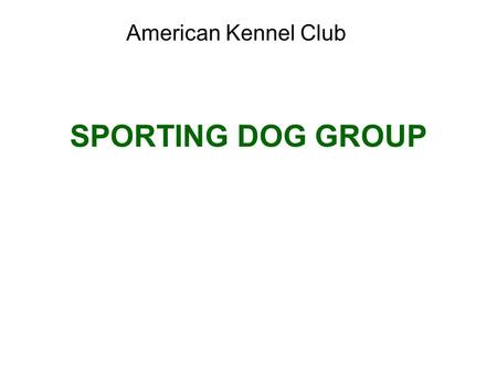 SPORTING DOG GROUP American Kennel Club. Brittany Sporting Group; AKC recognized in 1934. Average size: 30 to 40 pounds and 17 ½ to 20 ½ inches at the.