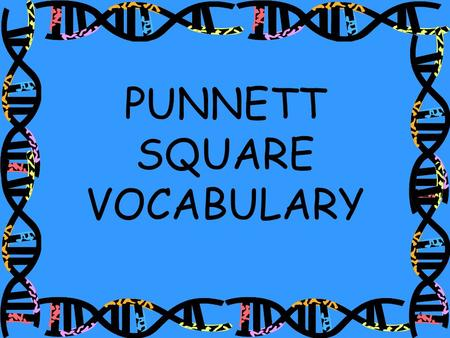 PUNNETT SQUARE VOCABULARY