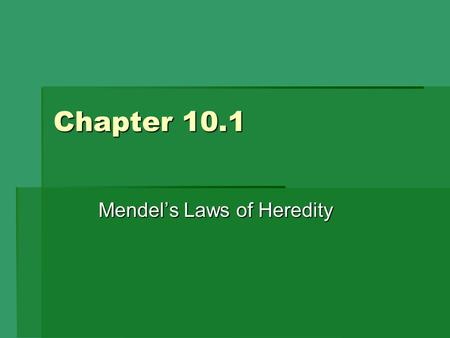Chapter 10.1 Mendel's Laws of Heredity. Explain fertilization. Fertilization = male gamete (sperm) + female gamete (egg)  Resulting cell is now called.