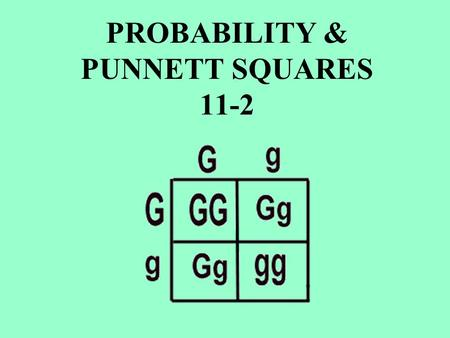 PROBABILITY & PUNNETT SQUARES 11-2. It can be written as a: Fraction ____ Percent ____ ____________________ is the __________ that a particular _________________.