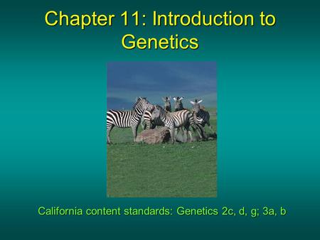 Chapter 11: Introduction to Genetics California content standards: Genetics 2c, d, g; 3a, b.