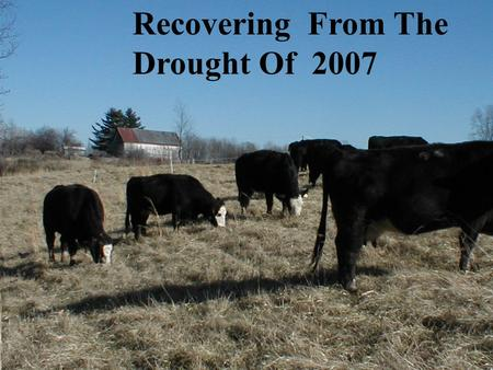 Recovering From The Drought Of 2007. How Would You Rate Your 2007 Forage Management Performance 1,2 or 3 Did your management decisions for 2007 weaken.