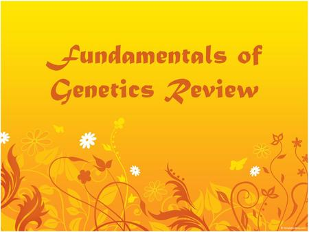 Fundamentals of Genetics Review. Definitions 100 The field of Biology devoted to understanding how characteristics are transmitted from parents to offspring.