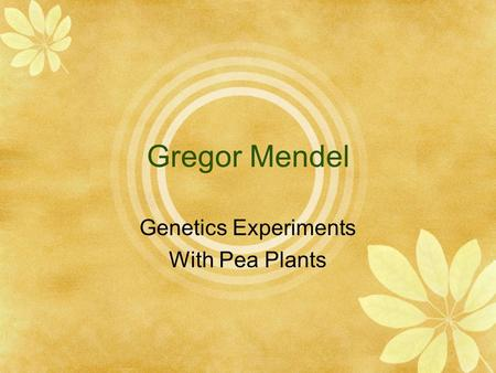 Genetics Experiments With Pea Plants