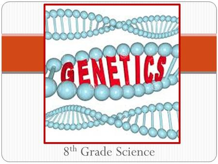 8 th Grade Science Genetics DNA A = Adenine T = Thymine C = Cytosine G = Guanine.
