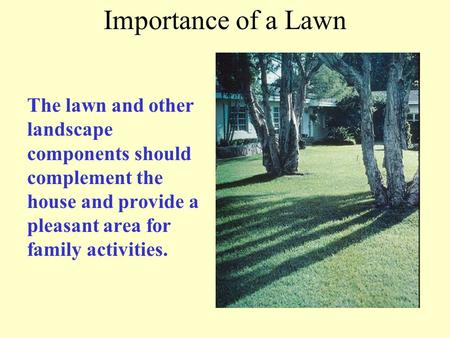 Importance of a Lawn The lawn and other landscape components should complement the house and provide a pleasant area for family activities.