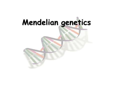 Mendelian genetics Gregor Mendel Father of modern genetics Researched with pea plants.