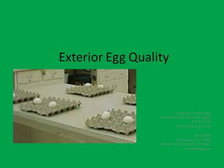Exterior Egg Quality Created by Connie Page Emanuel County Extension Agent P.O. Box 770 129 N. Anderson Drive April, 2006 Swainsboro, GA 30401 478-237-1226.