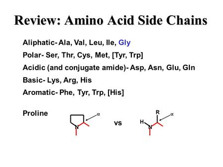 Review: Amino Acid Side Chains Aliphatic- Ala, Val, Leu, Ile, Gly Polar- Ser, Thr, Cys, Met, [Tyr, Trp] Acidic (and conjugate amide)- Asp, Asn, Glu, Gln.