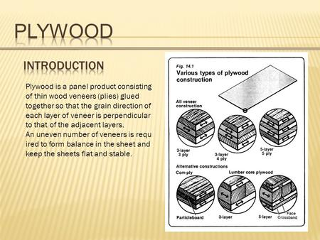Plywood is a panel product consisting of thin wood veneers (plies) glued together so that the grain direction of each layer of veneer is perpendicular.